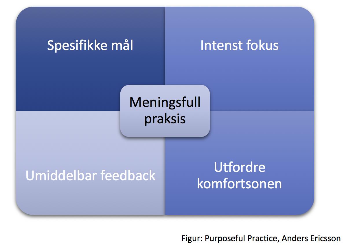 Purposeful Practice / Meningsfull praksis / Anders Ericsson / PEAK
